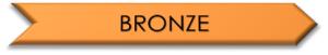 Bronze v2